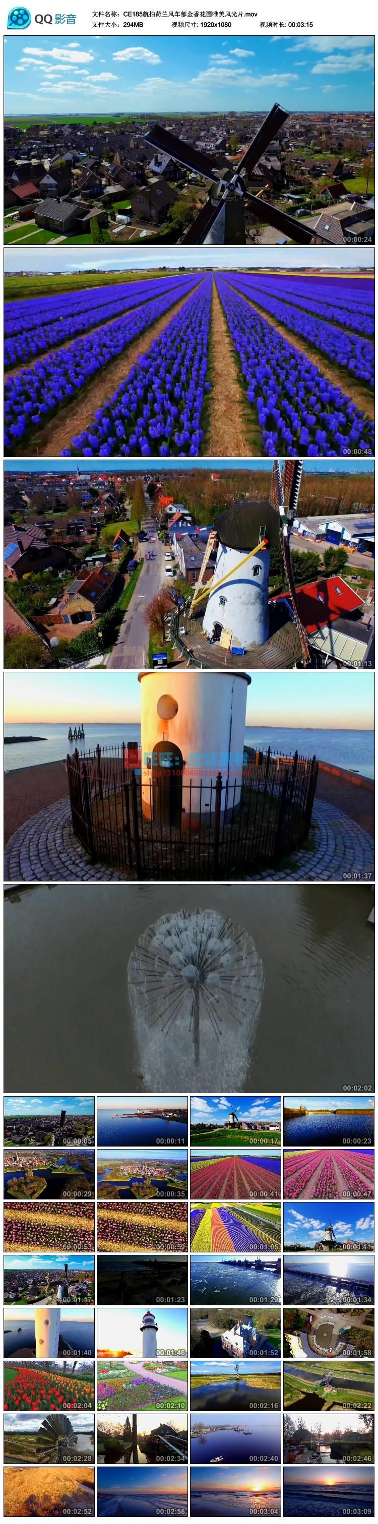 航拍荷兰风车郁金香花圃唯美风光片高清实拍视频素材