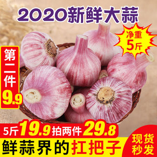 Purple fresh garlic dried garlic 5 pounds of dry red garlic clove 10 new red garlic fresh garlic Yunnan