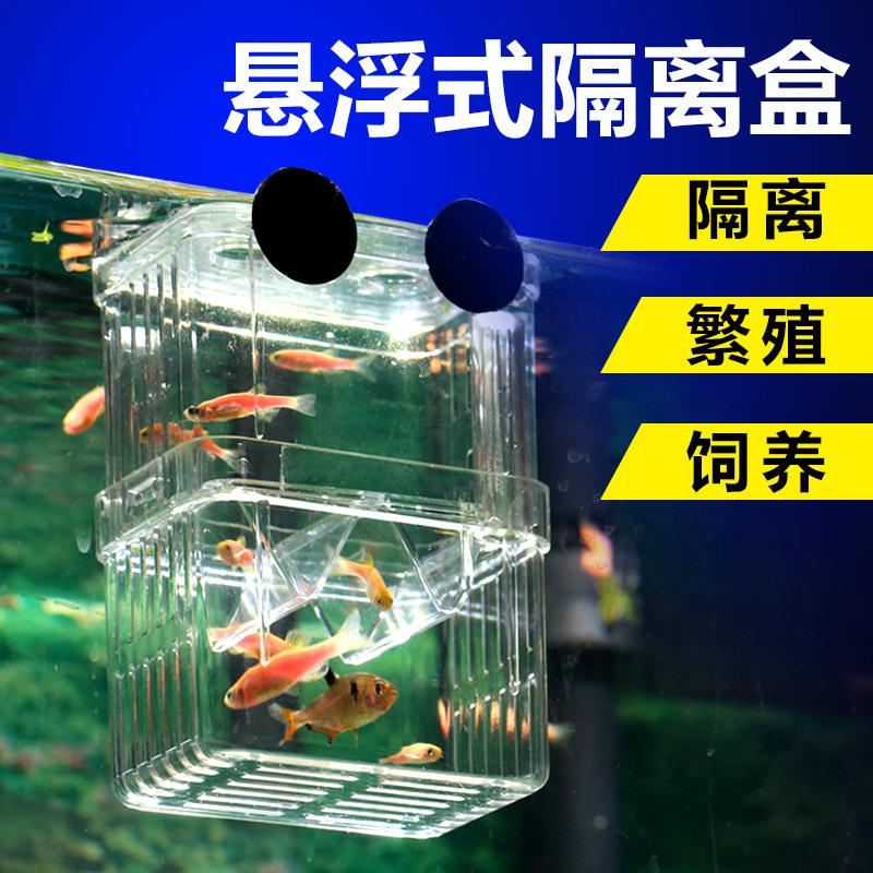 森森鱼缸鱼产卵盒鱼苗孔雀v鱼缸斗鱼幼鱼繁殖器热带鱼亚克力孵化盒