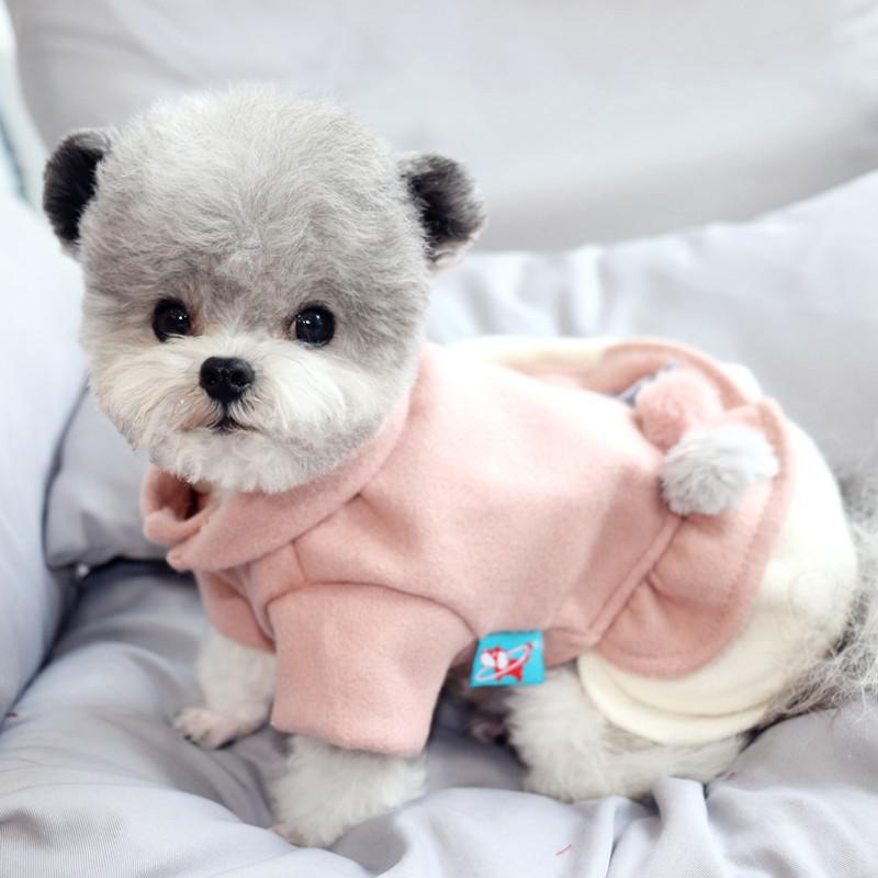 秋冬新款狗狗裙子寵物衣服泰迪衣服比熊貴賓雪納瑞博美公主裙子寵物公主裙
