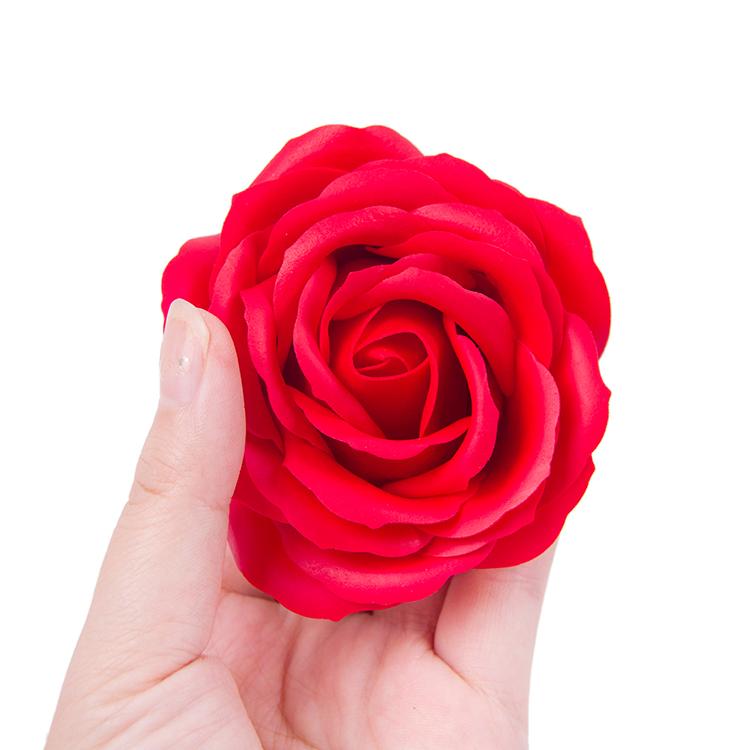 rose flower paragraph