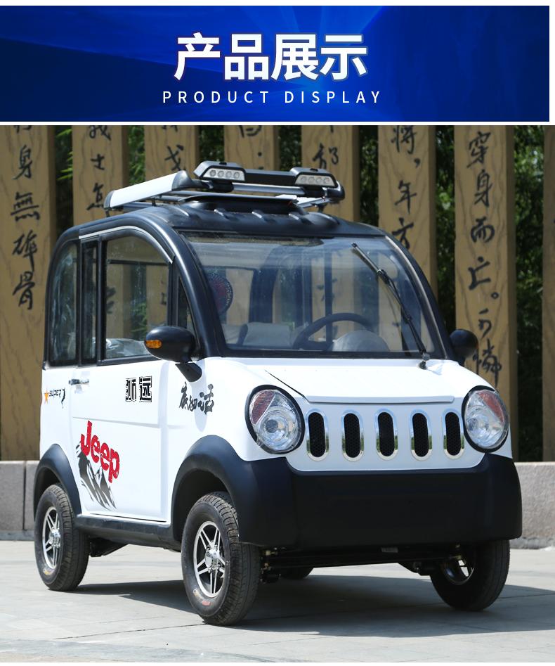 新能源汽车油电动四轮车女性全封闭式家用接送孩子代步小型电动车详细照片