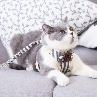 Cat traction rope cable chain rope kitten anti-break free free kitty rope vest type out of the cat artifact