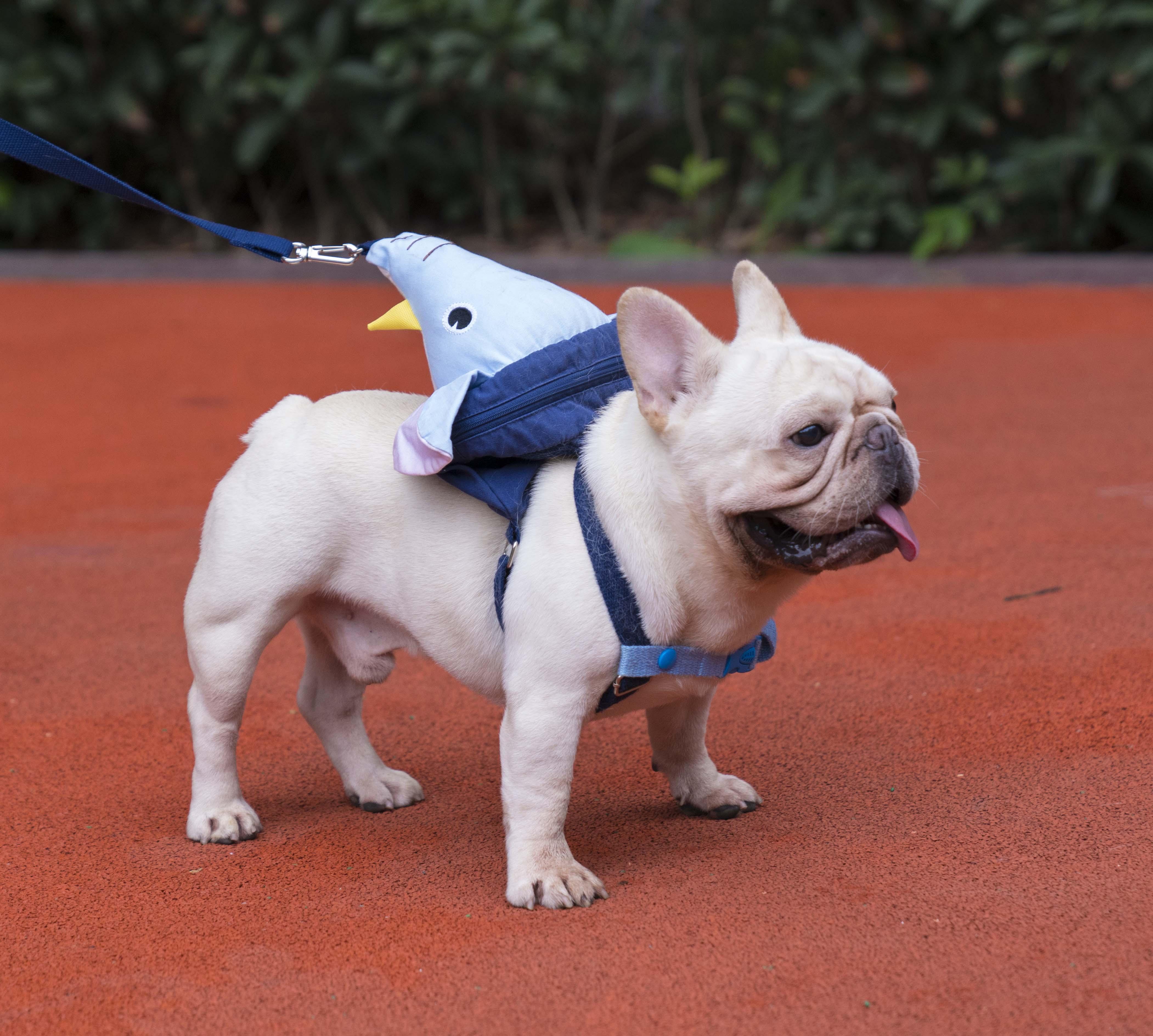FRENCH  BULLDOG     DOG WINE STOPPER