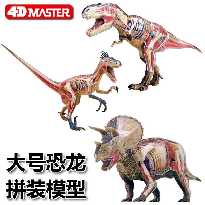 USD 211.07] 4D MASTER animal model 4d vision Tyrannosaurus Anatomy ...