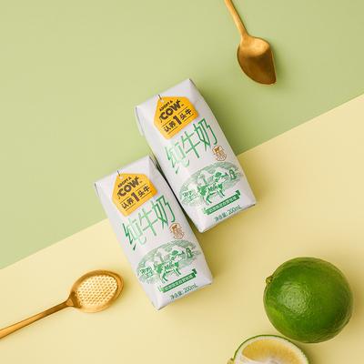 纯生牛乳早餐营养牛奶200ml*12
