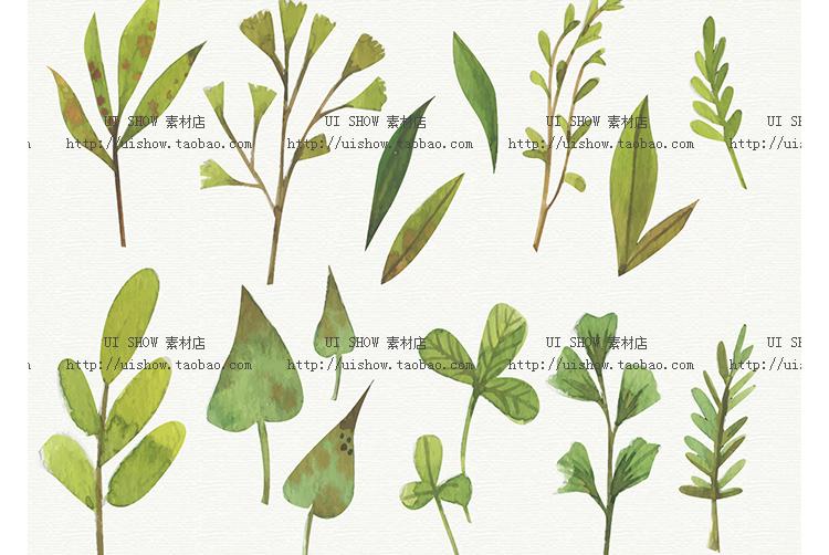 小清新水彩手绘树叶热带棕榈叶植物叶子插画背景海报矢量图片素材插图(14)