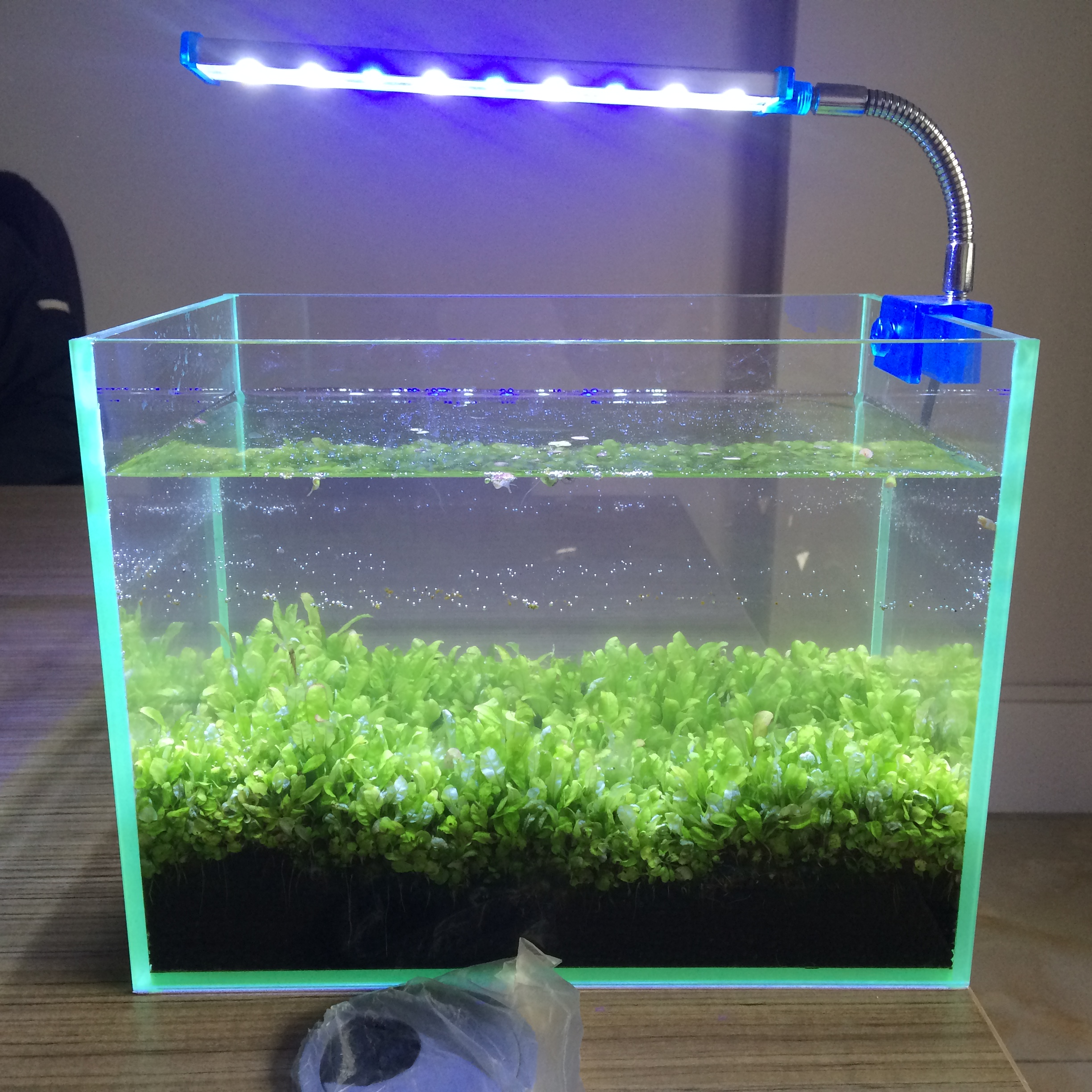 led tank inch price find fish wifi lights at of aquarium light ideas low