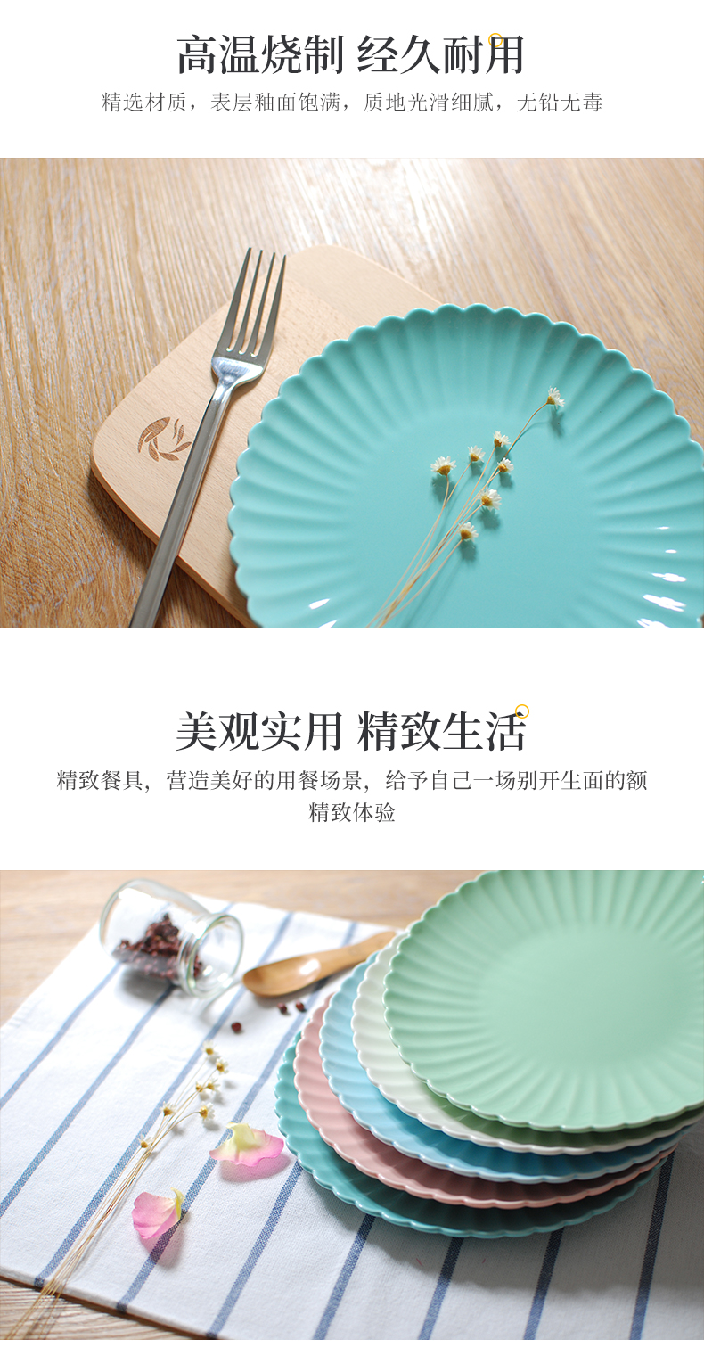High ins do old vintage white by pan dinner plate tableware of pottery and porcelain Japanese household food all the plates