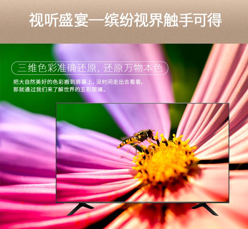 e3a_9.jpg