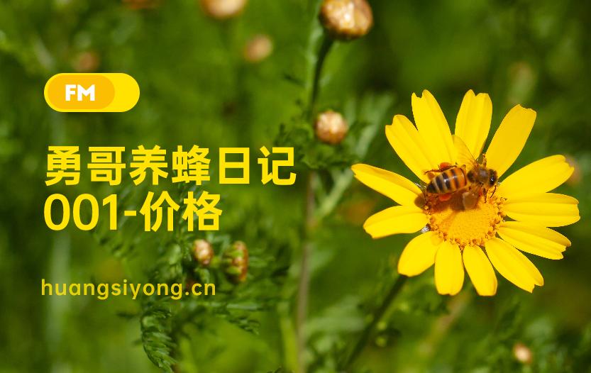 为什么蜂蜜有的很便宜?勇哥养蜂日记-001