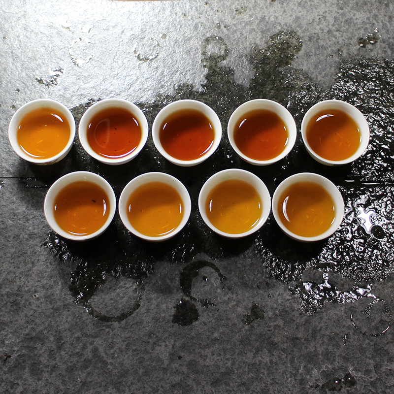 安化黑茶,捷饮正源茯茶砖深度评测