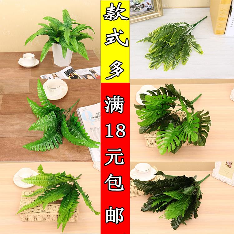 包邮插花波斯叶草蕨类植物阳台墙背景绿植客厅工程装饰仿真配材