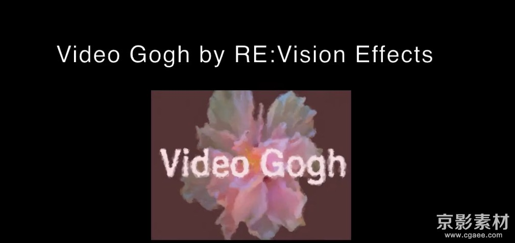 AE水彩画油画效果插件-RevisionFX VideoGogh v3.9 Win/Mac 英文/中文版