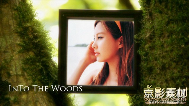 AE模板-走入森林相册图片展示片头 Into The Woods V1.0