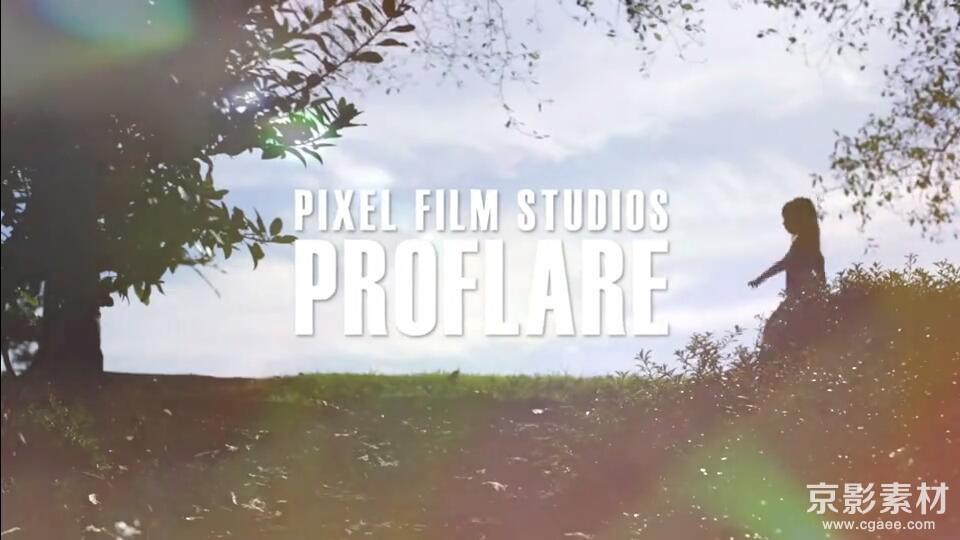FCPX插件-PROFLARE-150种光效漏光预设效果-中文/英文-Final Cut Pro X 插件