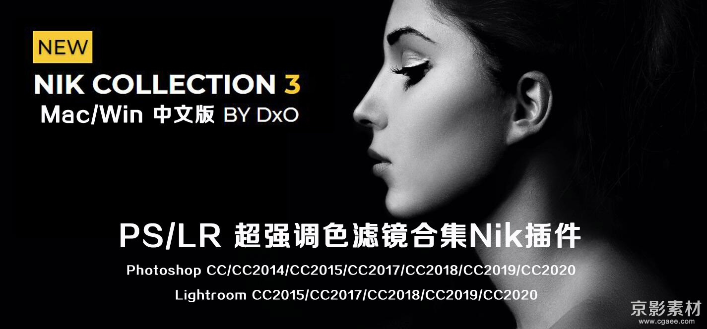 Nik Collection v3.0.7 2020 Mac/Win PS/LR超强调色滤镜合集Nik插件中文版+中文教程