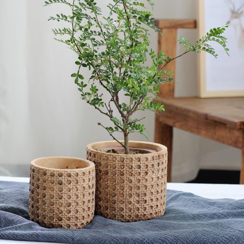 欧式复古水泥花盆创意个性室内绿植盆栽北欧简约装饰盆器ins大号