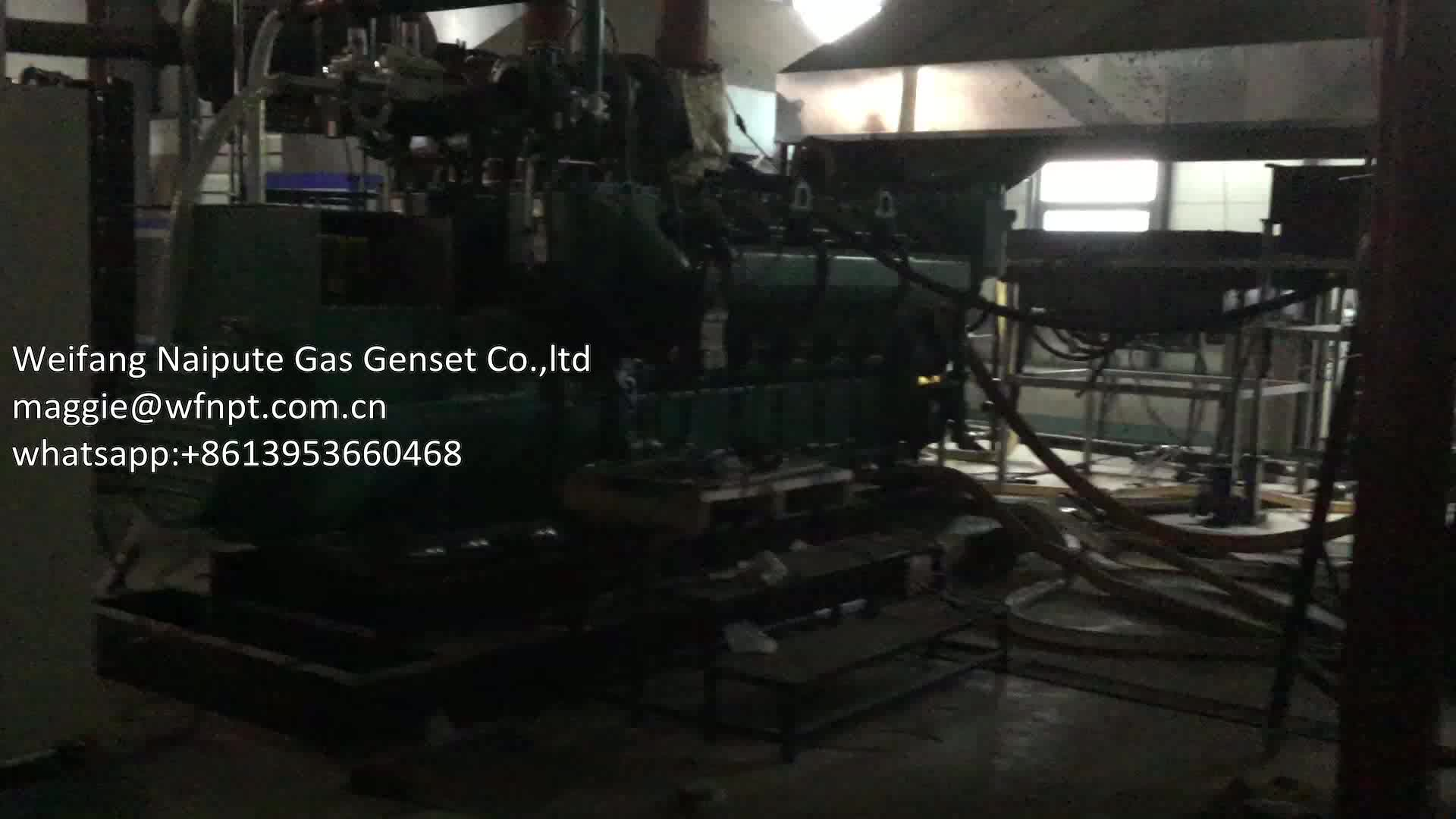 800KW Woodgas Generator with Gasification /Biomass Gas Generator