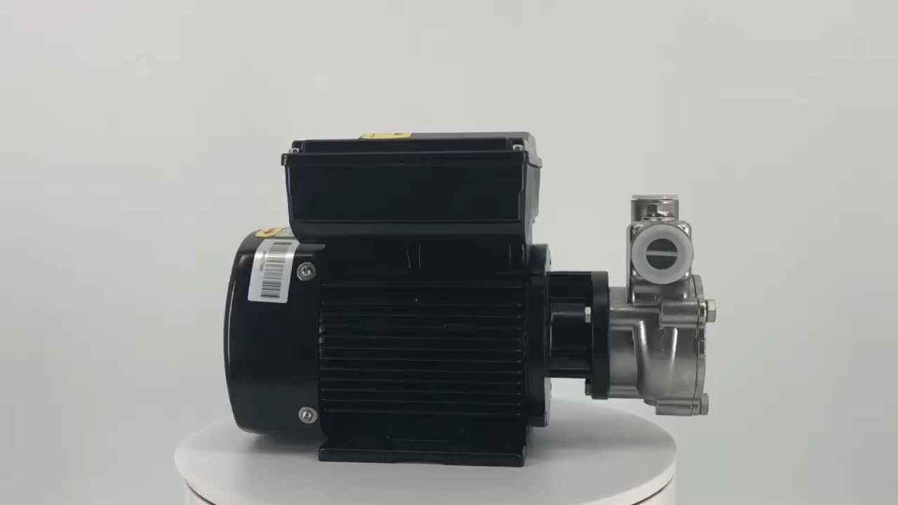 Ozone gas-liquid mixing pump