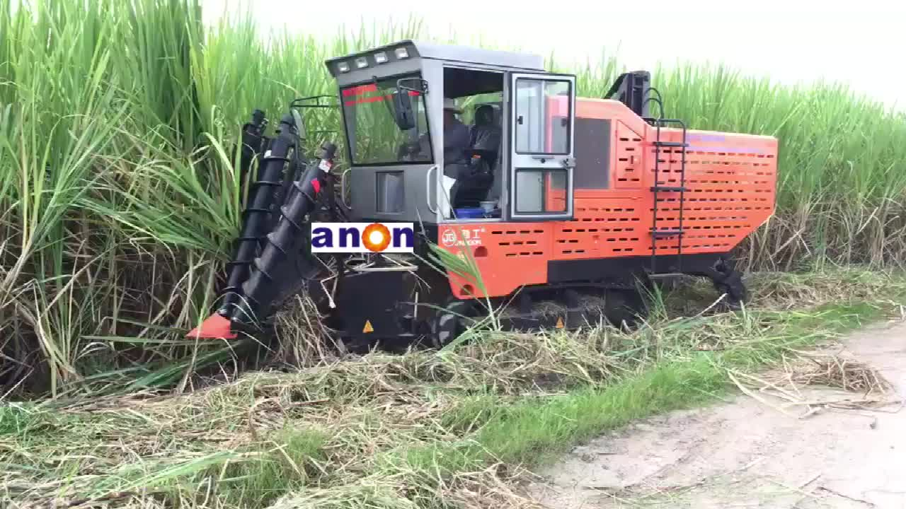 ANON Good quality durable sugarcane harvester for sale in philippines