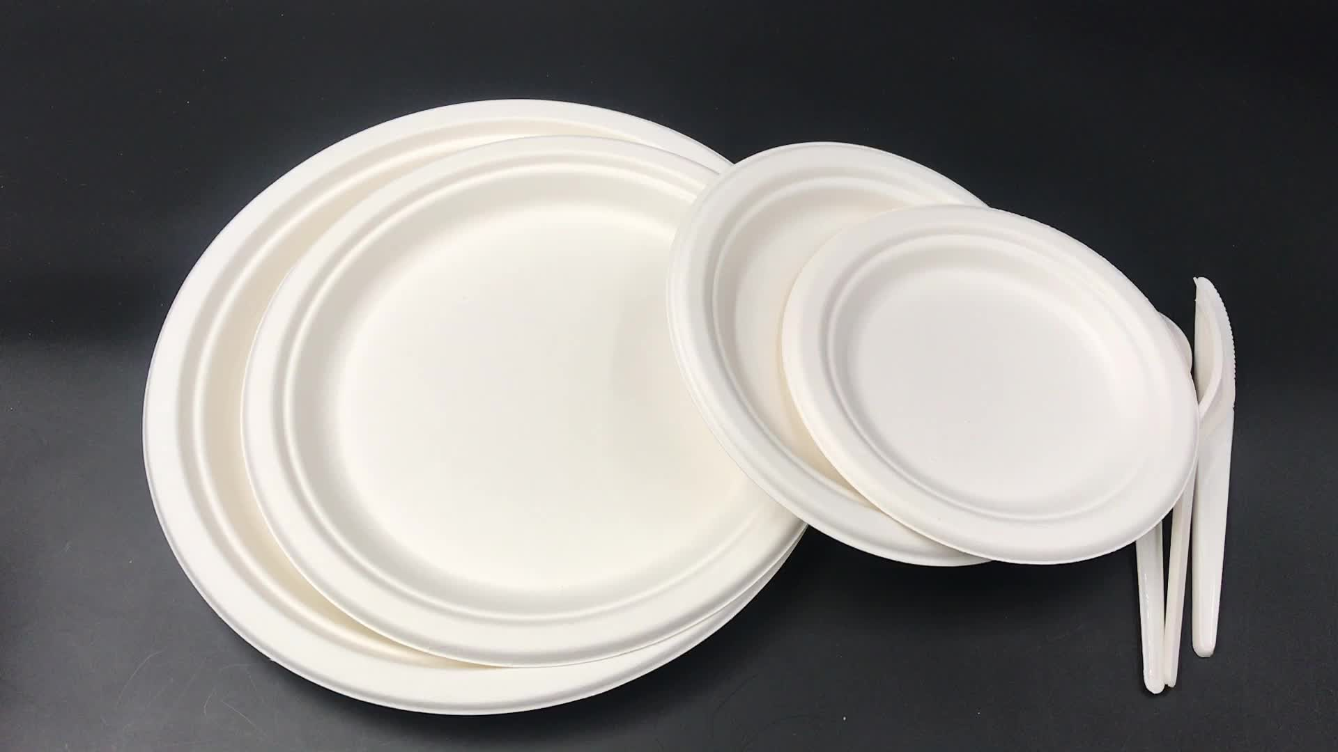 100% Eco friendly tableware sugarcane pulp fast food plate pure bagasse disposable biodegradable plates and cutlery