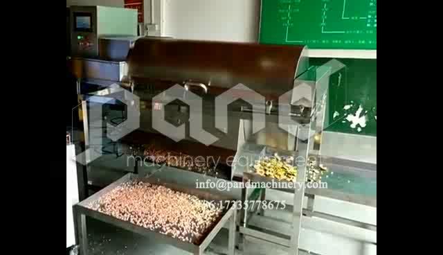 Commerciële granaatappel dunschiller fruit zaad verwijderen machine waxberry fruit aparte machine