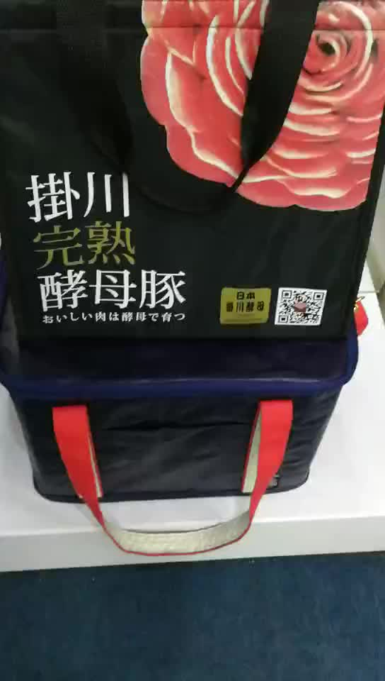 guangzhou Factory high quality wine delivery bag insulated food cooler bag with zipper