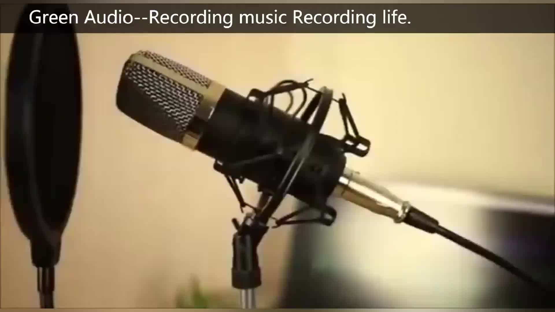 BM-800 Green Audio Microphone Professional Studio Condenser Sound Recording Microphone