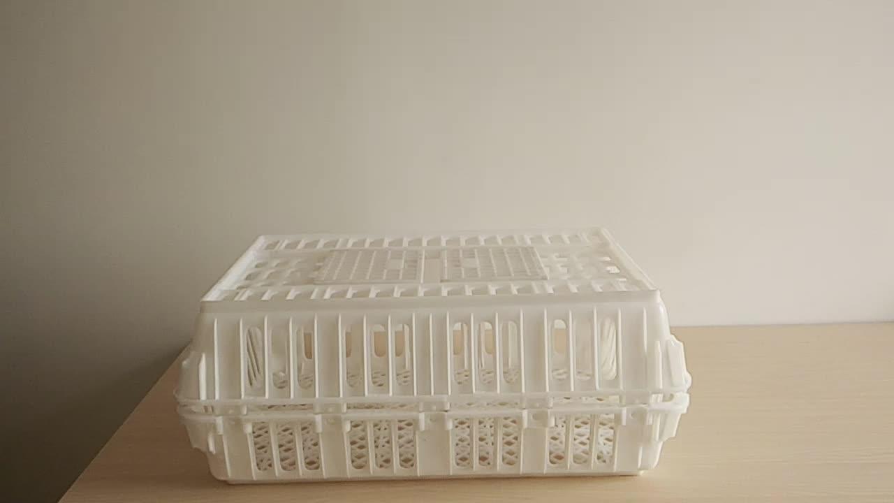 HDPE Chick Container Sống Gia Cầm Nhựa Gà Crate