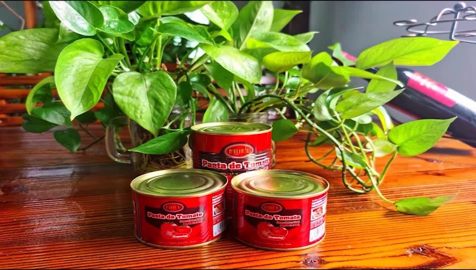 缶詰トマトペースト 400 グラム