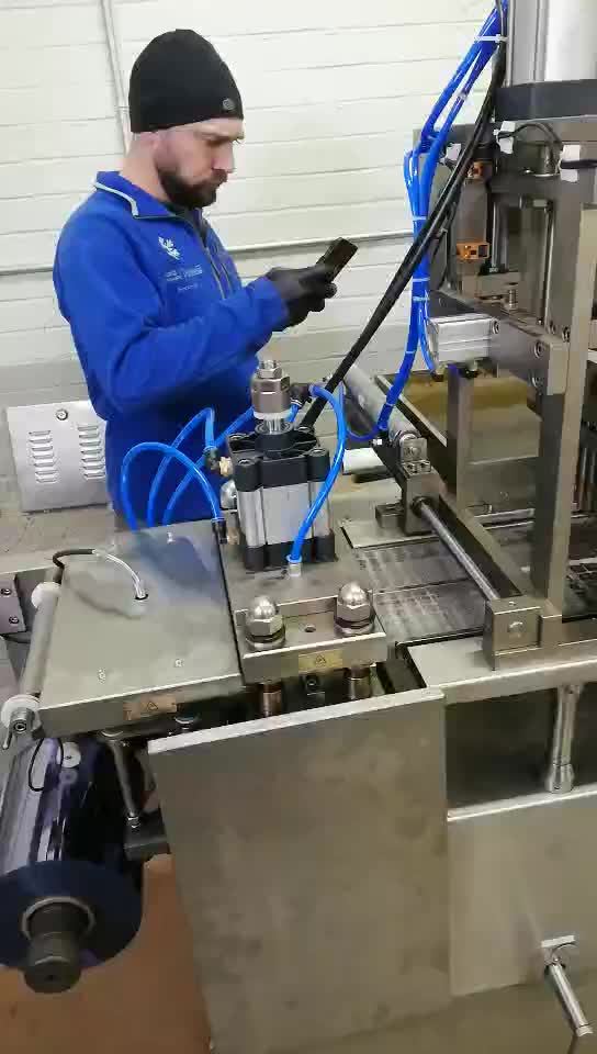 Professional Fish Food Processing Extruder Equipment Blister Packaging Machine