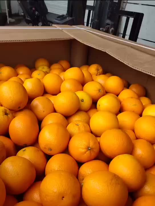 import from south Africa red grapefruit pulp for bar