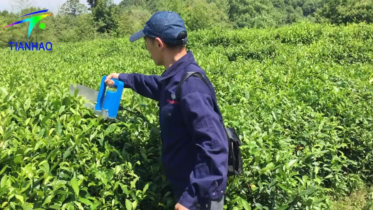 Luce Peso Addebitabile Elettrico Tè Harvester