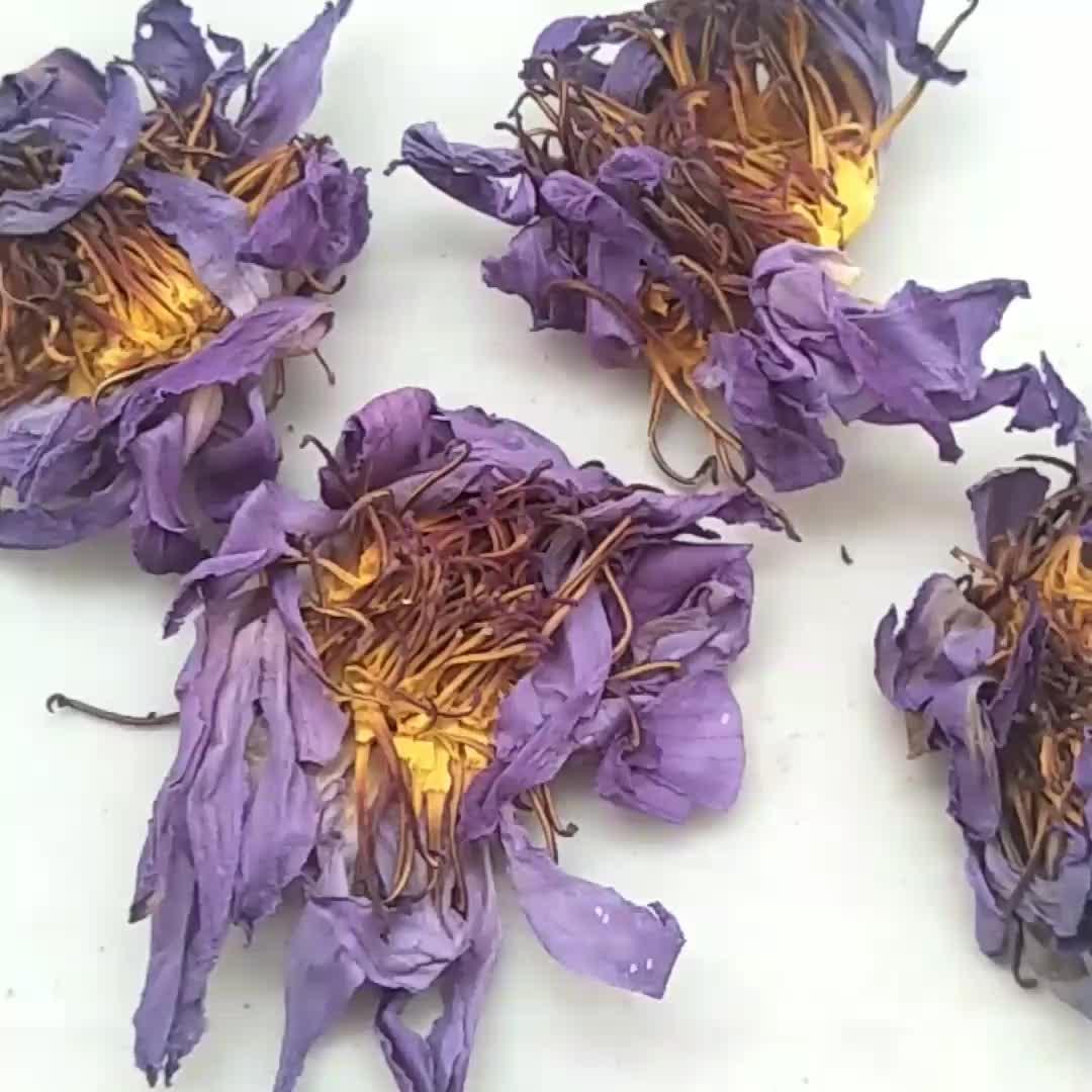 Lan lian hua wholesale Factory Supply dried Blue Lotus flower