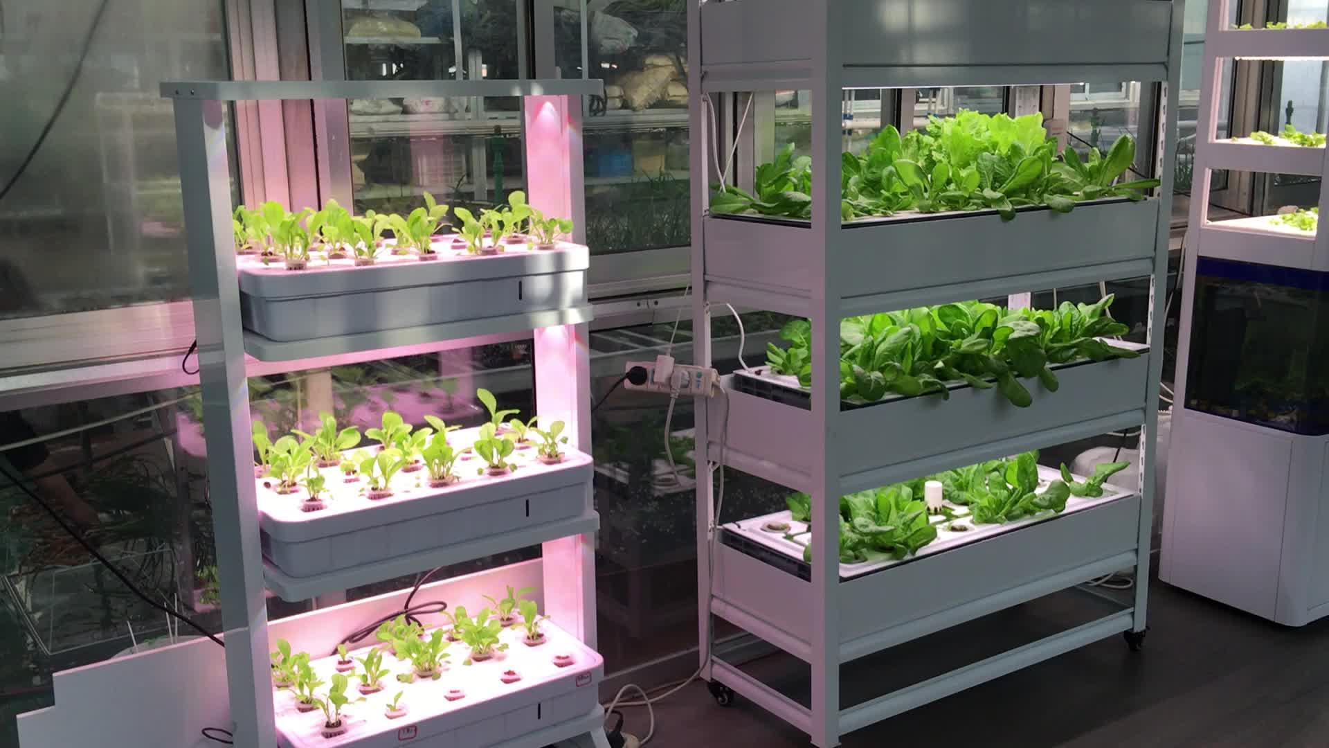Skyplant Giardino di Casa verticale Crescere Kit Indoor Crescere Sistema di Coltura Idroponica FAI DA TE Aeroponic Sistemi di Coltivazione Idroponica