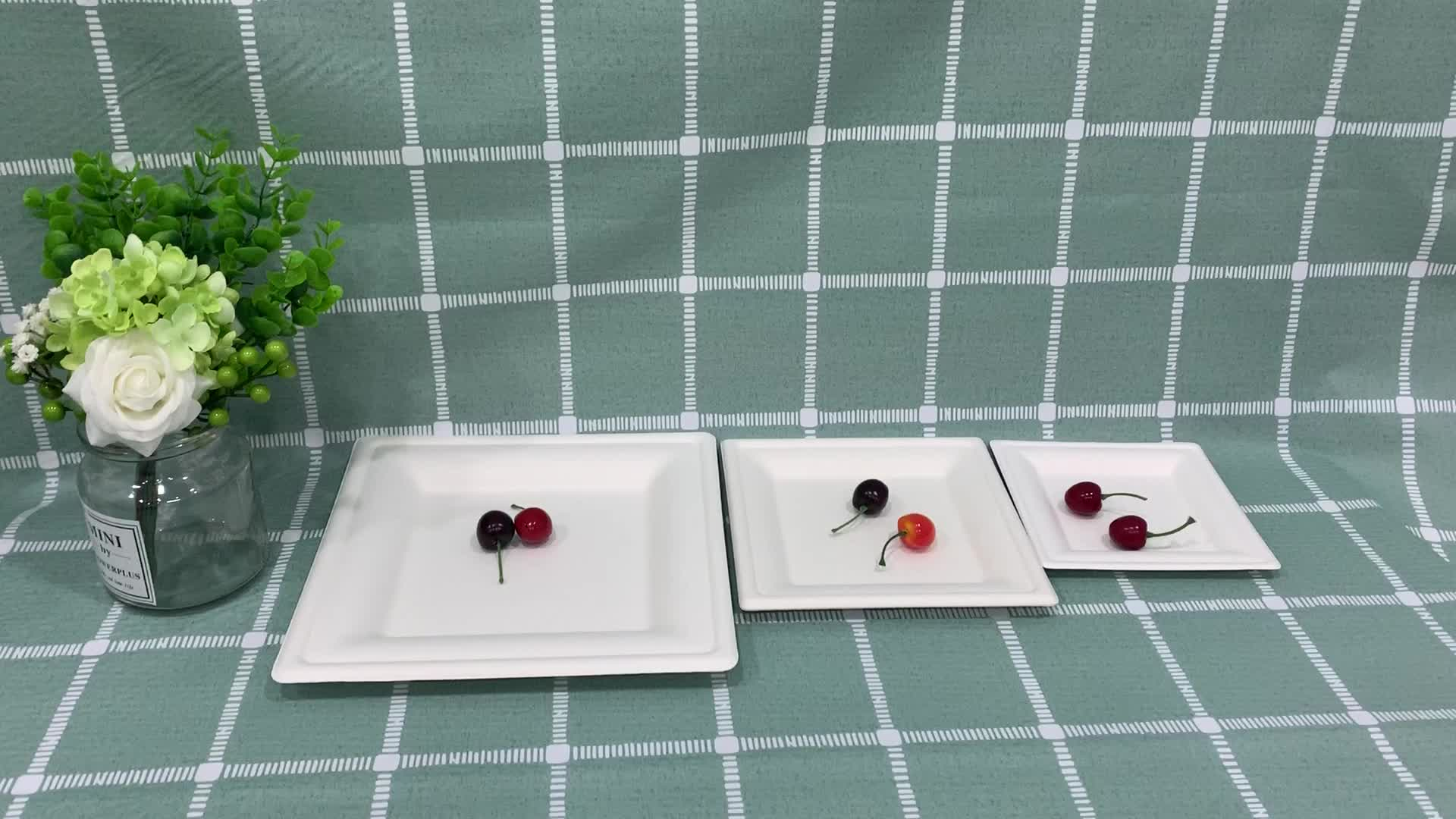 Disposable sugar cane pulp dishcompostable bagasse paper square plate