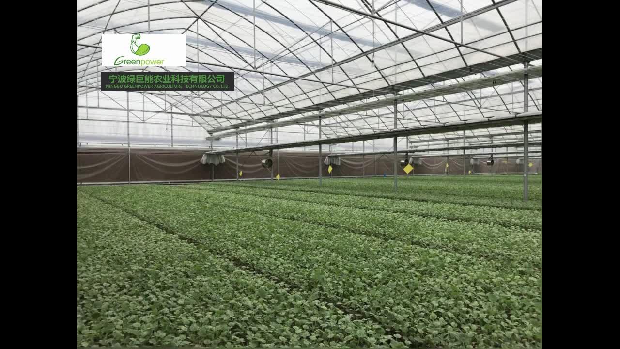 72 Célula de plántulas de plantación de bandeja de plástico para semillas