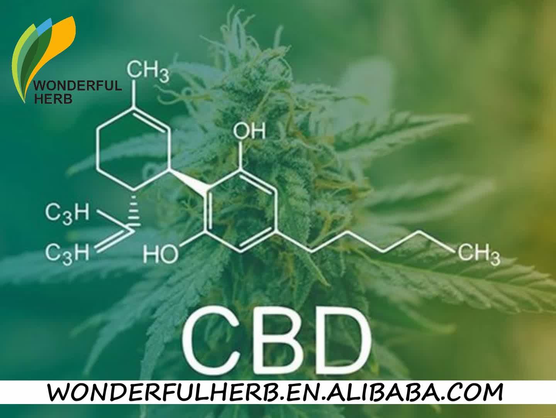 항 암 cannabidiol oil cbd 방울