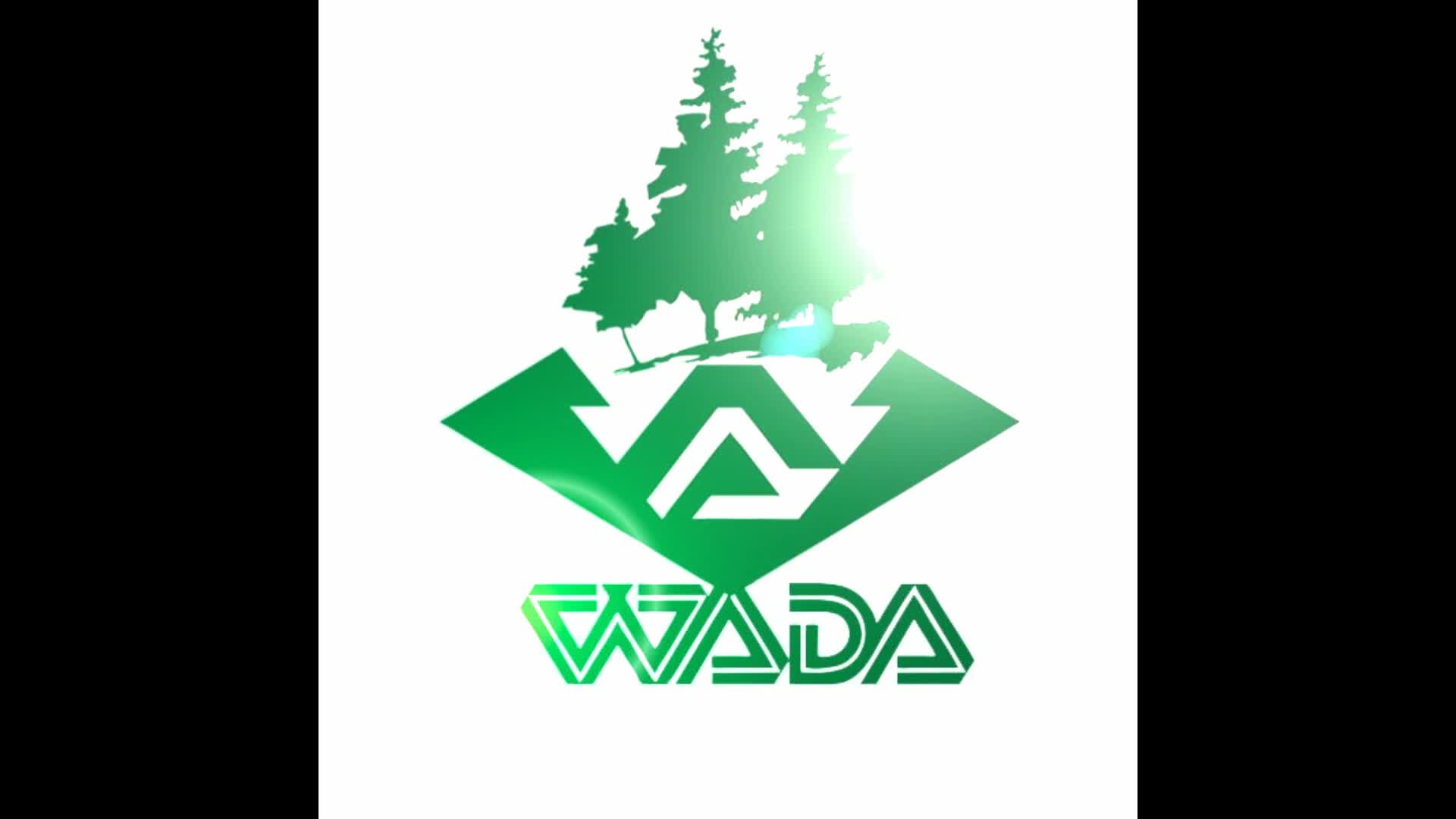 wada customized LVL lvl wood products door frame