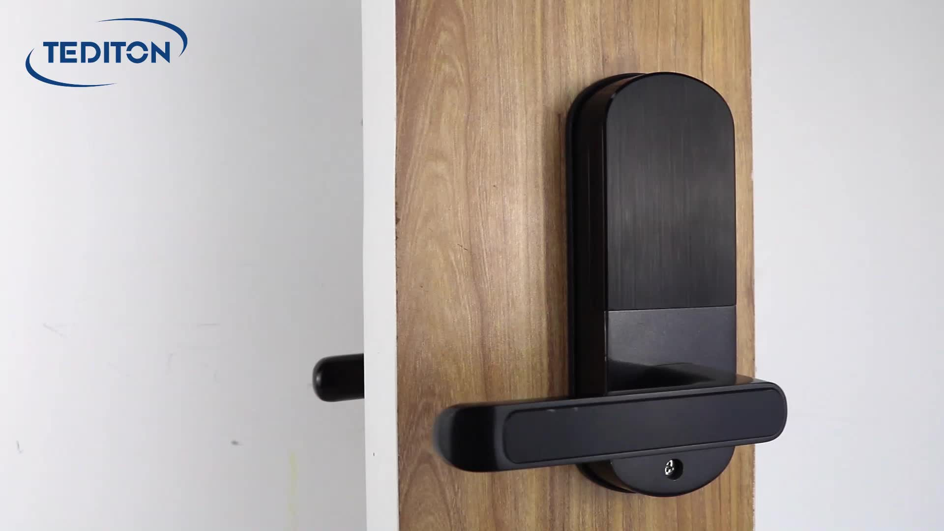 Tuya Smart Home Alexa Keamanan Wifi Sidik Jari Biometrik Kunci Pintu dengan Bel Pintu