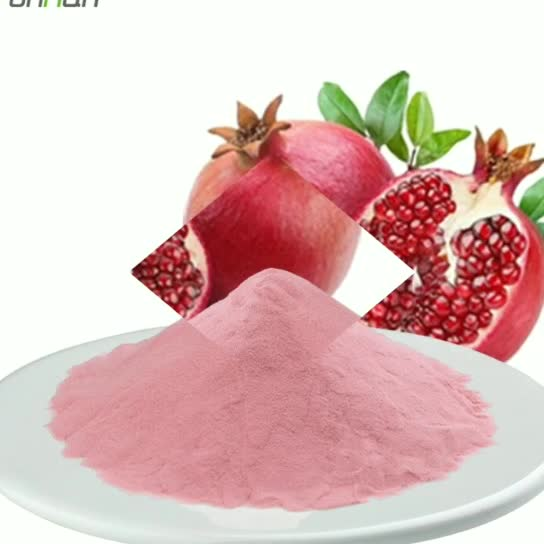 100% Natural Fruit Extract Pomegranate Powder Red Pomegranate Juice Powder