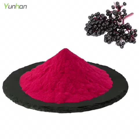 Pure Natural Imported Elderberry Powder High Purity Elderberry Extract Powder