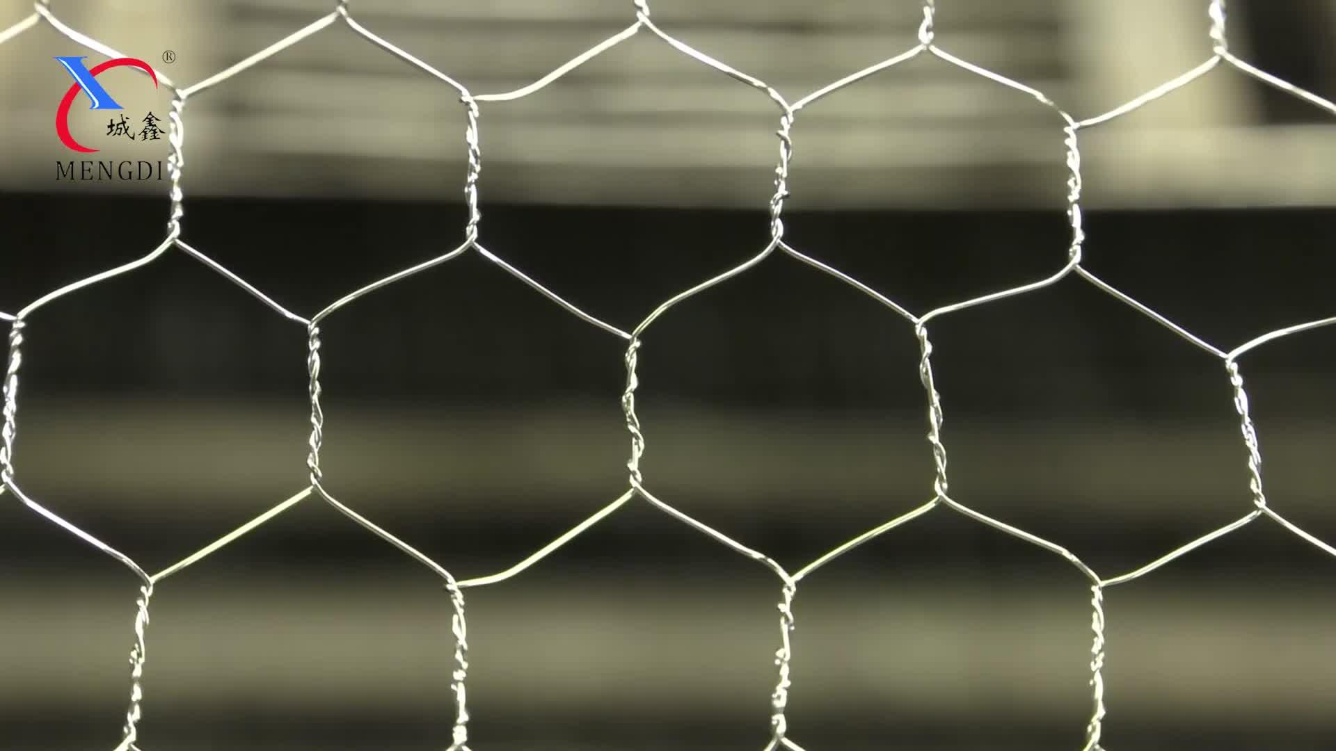 Hot Sales!Aviary Fencing/Hexagonal mesh