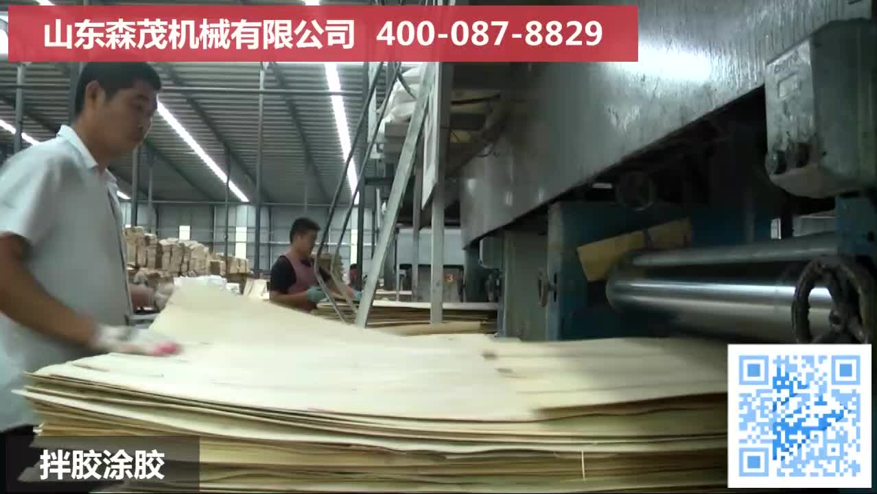 Complete Plywood production line/ Plywood making machine with glue spreader