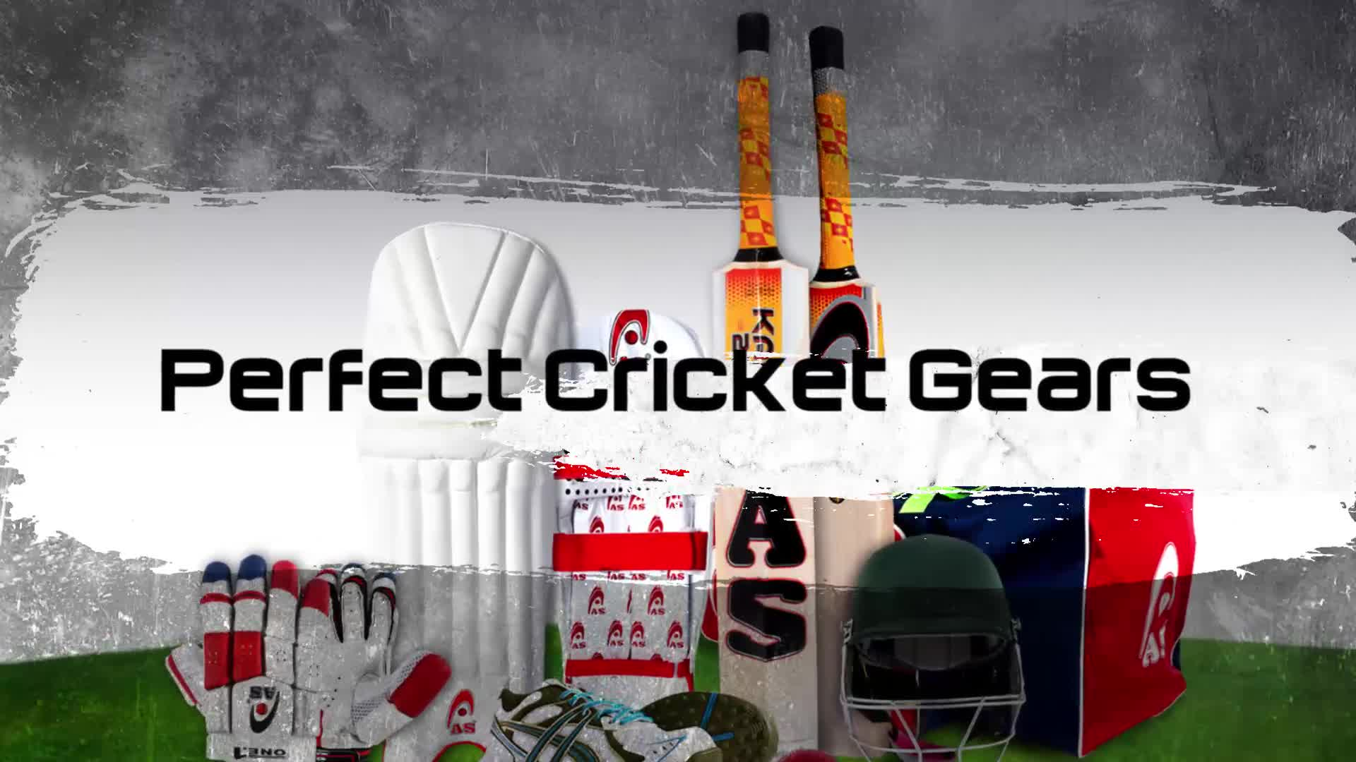White Cricket Ball 156gm Professional Quality 50 overs AS Sports