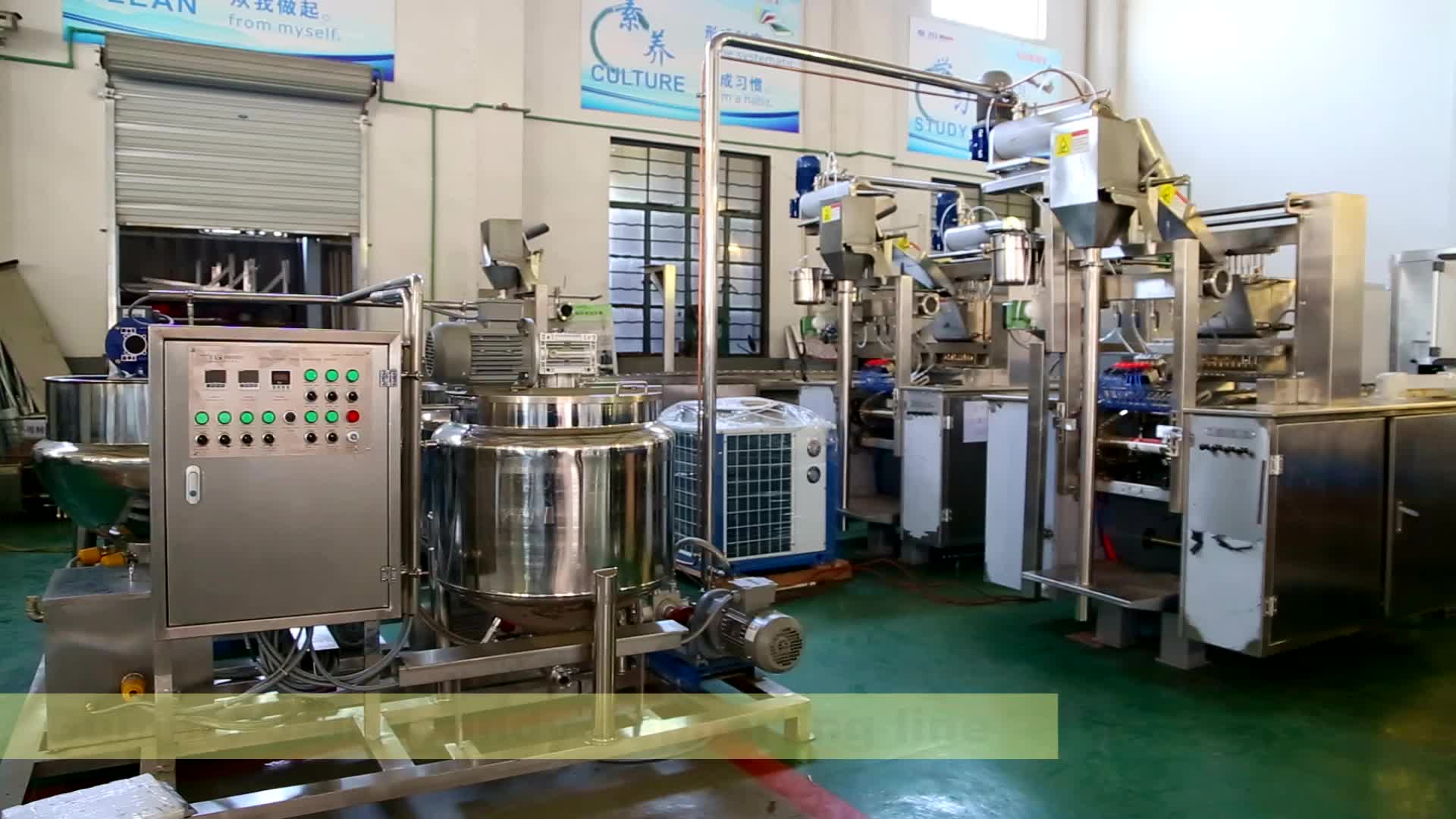 Automatic CBD and Vitamin gummy bear candy making machine/Jelly candy production line