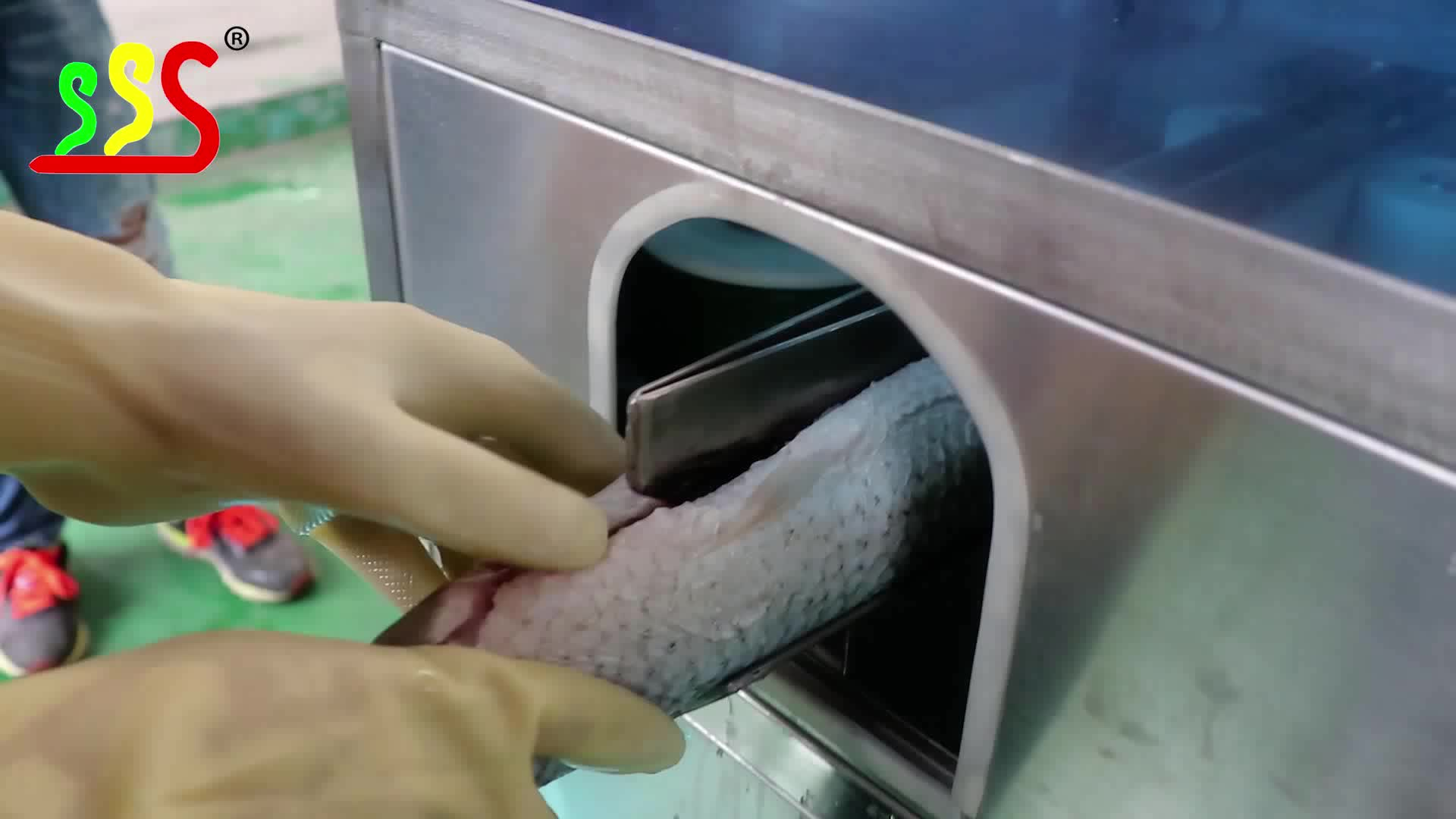 Fillet cutting machine for fish