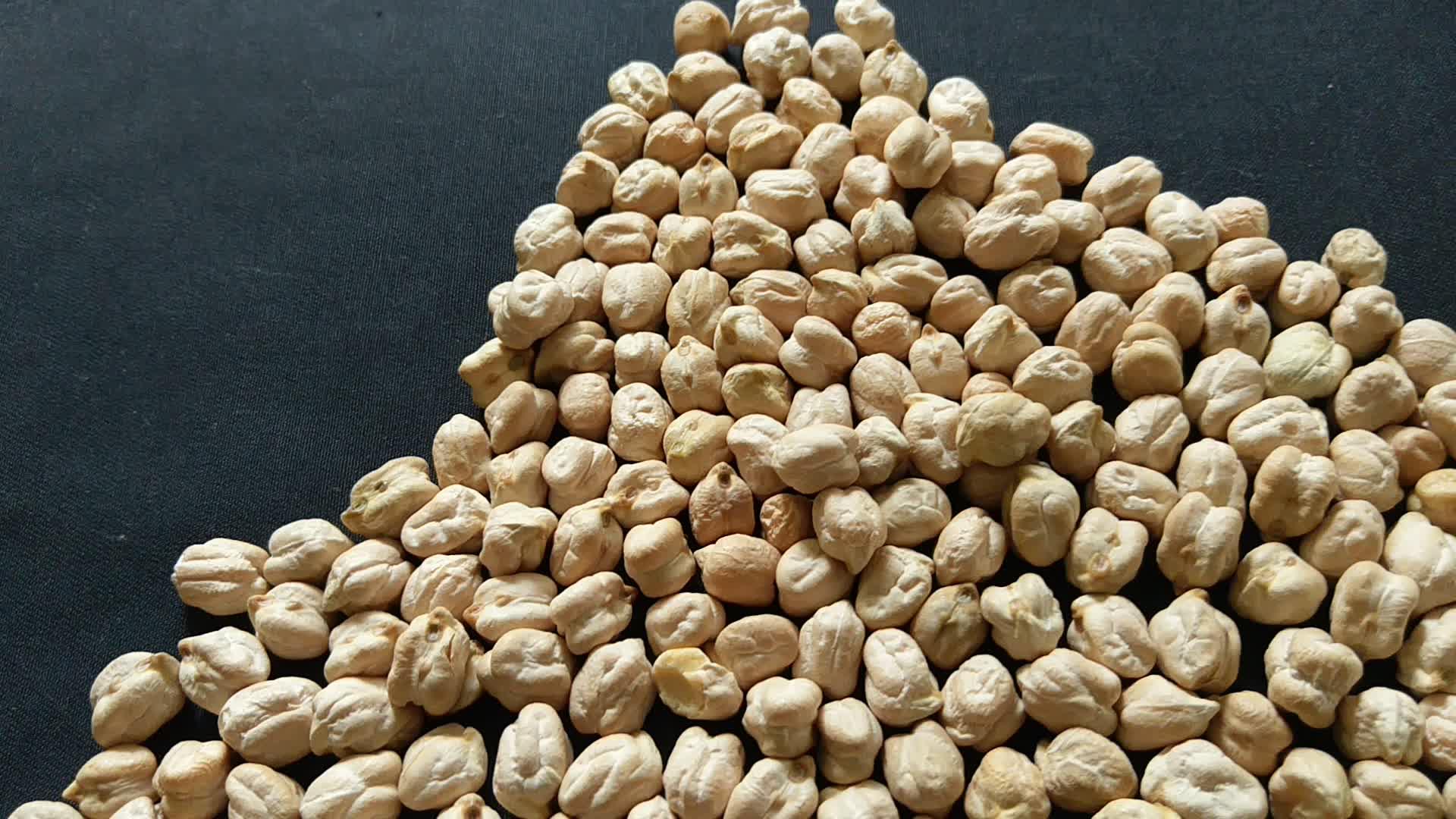 白 Kabuli ひよこ豆