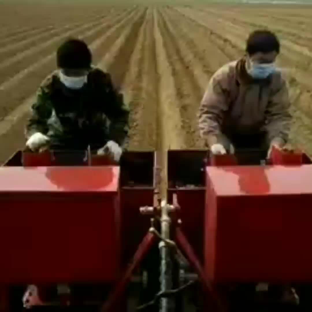 Boerderij Machine Aardappel Planter Voor Wandelen Trekker